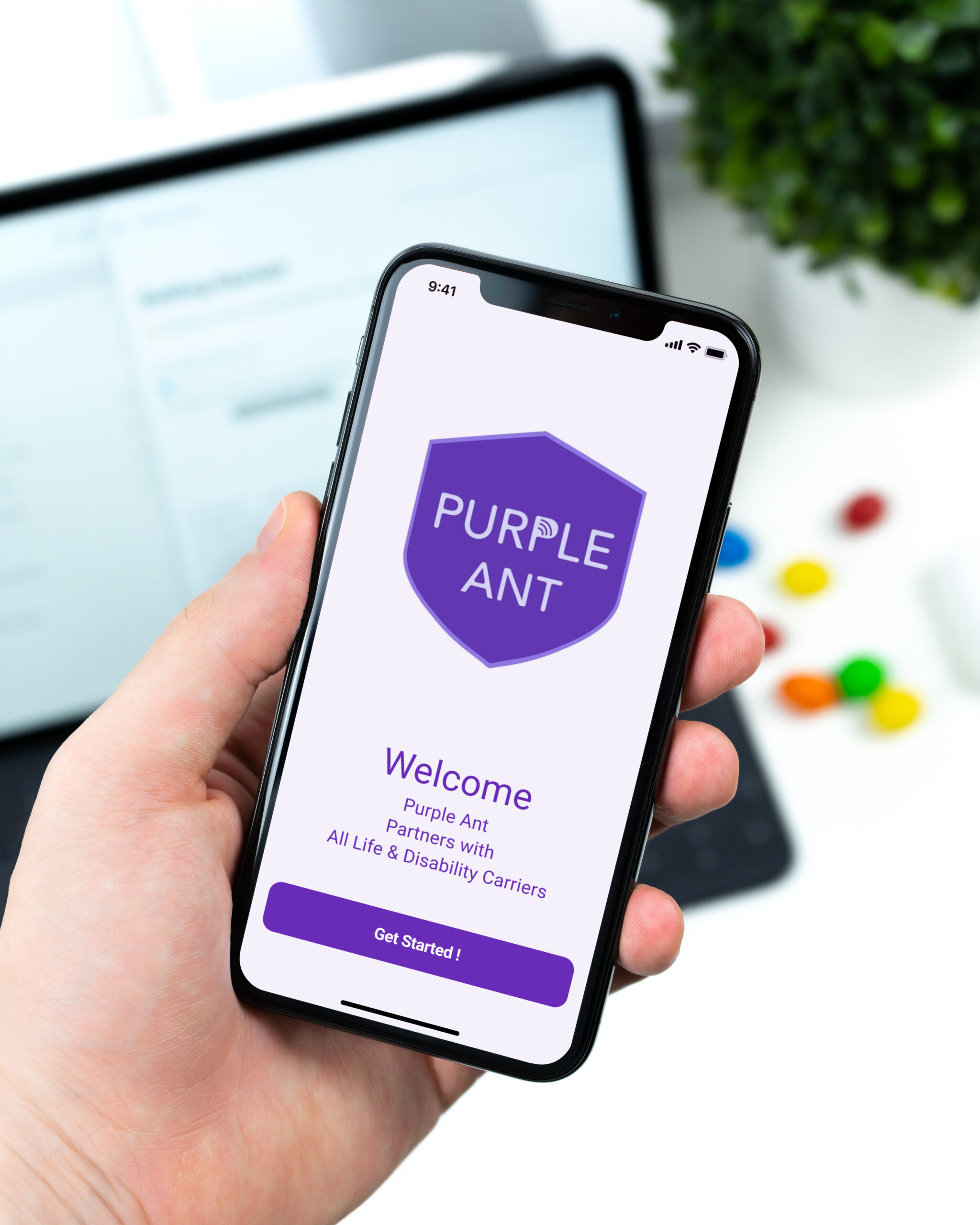 Purple-Ant-Mock-up-2
